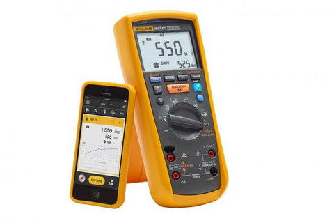 1587-FC - Insulation Multimeter