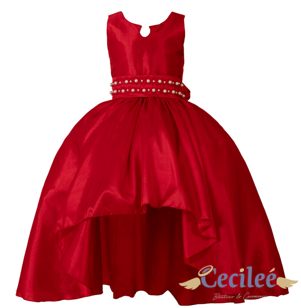 Holiday Satin Dress by Cecilee