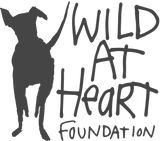 Wild For Dogs Charity Partner Wild At Heart Foundation