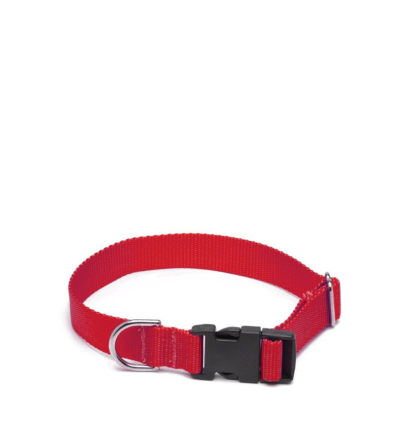 Nylon Dog Collar, Red