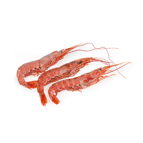 Arentinean red shrimp 1