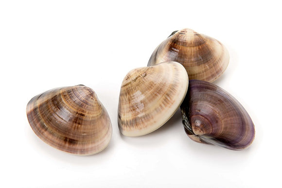 Clams fecdc583 79e4 4b96 be5e 8487330d5cc6