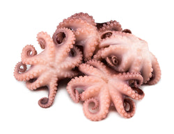 Octopus - Whole, Vulgaris, Flower, IQF, Morocco