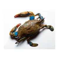 Blue Crab - Whole, IQF, Mexico