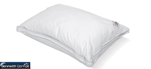 Twin Pack MLily Indulgence Pillow - Bennetts Bedrooms