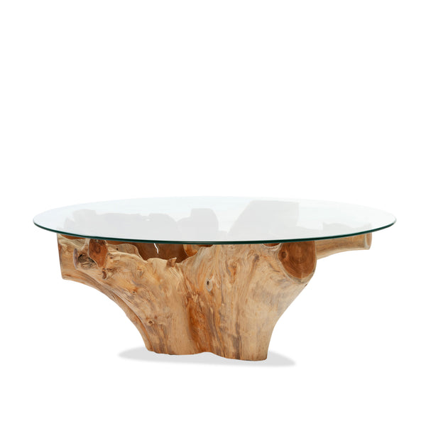 Root Glass Coffee Table — Raw - Empire Homewares