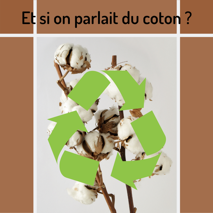 🌱 Let's talk about cotton 🌱