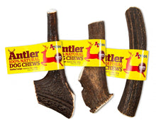 Load image into Gallery viewer, Antos - Antler Dog Chew