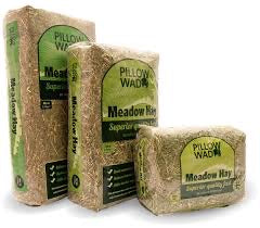 Pillow Wad - Meadow Hay