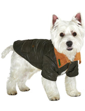 Load image into Gallery viewer, Urban Pup - Forest Green Quilted Town & Country Coat