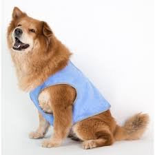 Cocojojo - Pet Cooling Vest