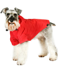 Load image into Gallery viewer, Urban Pup - Explorer Windbreaker Sport Jacket Red