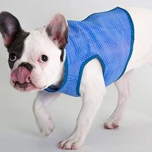 Load image into Gallery viewer, Cocojojo - Pet Cooling Vest