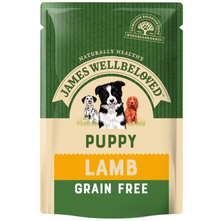 James Wellbeloved - Puppy & Junior Lamb Grain Free Pouches (12x100g)