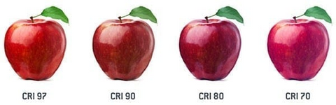 Picture of four red apples showing the effect of different CRI values on colour.