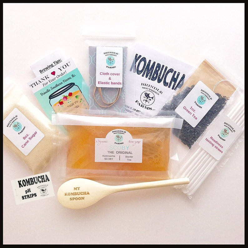 Kombucha making kit: Includes all the basic organic ingredients needed to make a 1 gallon batch of homemade kombucha. SCOBY, starter tea, spoon, sugar, tea and more!