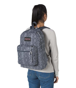 JanSport Rucksack Right Pack Expressions Backpack Python Please