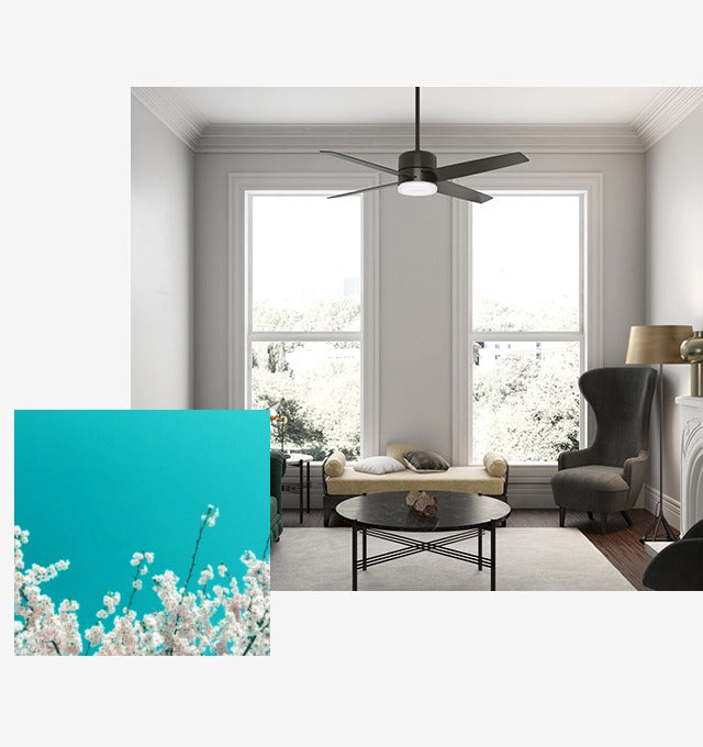 light up your spring with the best ceiling fan