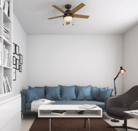 Anslee 46-inch ceiling fan in living room