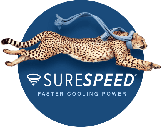 Hunter SureSpeed ceiling fan cheetah