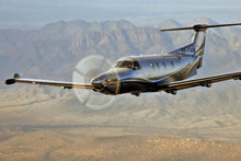 Load image into Gallery viewer, Pilatus PC-12 Plane Tint