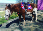 Load image into Gallery viewer, Custom Saddle Pad Country Flag - Padded Ponies