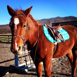 Load image into Gallery viewer, Custom Saddle Pad Giraffes - Padded Ponies