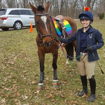 Load image into Gallery viewer, Custom Saddle Pad LGBTQ+ Pride - Padded Ponies