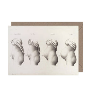 Stages of Pregnancy Greeting Card