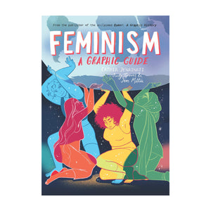 Feminism: A Graphic Guide - Cathie Jenainati, Judy Groves & Jem Milton