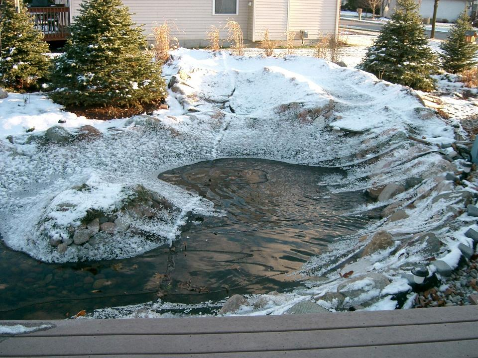 Winterizing Your Water Garden or Fish Pond