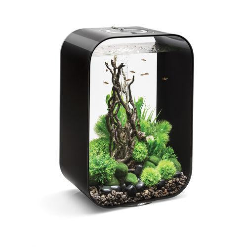 Black biOrb® LIFE 45 Aquarium Kit with Multi-Color Remote Controlled LED Lighting