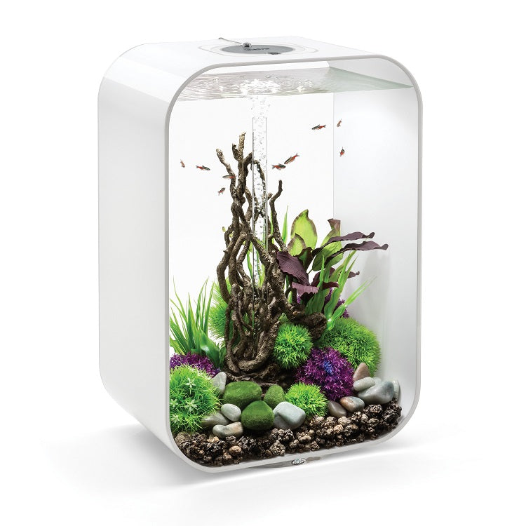 White biOrb® LIFE 60 Aquarium Kit with Multi-Color Remote Controlled LED Lighting