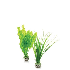 Small biOrb® Easy Aquarium Plant Decoration Set
