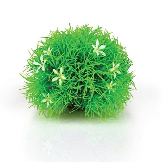 biOrb® Green Topiary Ball with Daisies