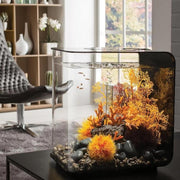 biOrb® FLOW 30 Aquarium Kit on a coffee table in chic modern living room