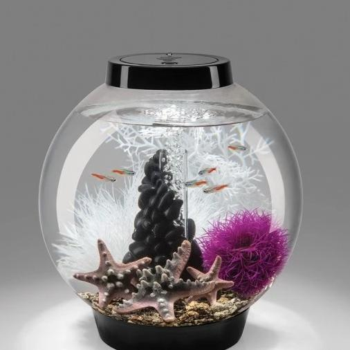 Baby biOrb® Set with Aquarium Decorations