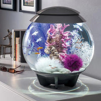 biOrb® HALO 30 Aquarium Kit by Oase