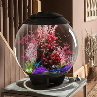 biOrb® HALO 60 Aquarium Kit on end table in entry hall