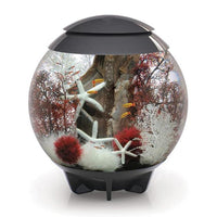 Moonlight Grey biOrb® HALO 60 Aquarium Kit