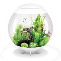 White biOrb® HALO 60 Aquarium Kit