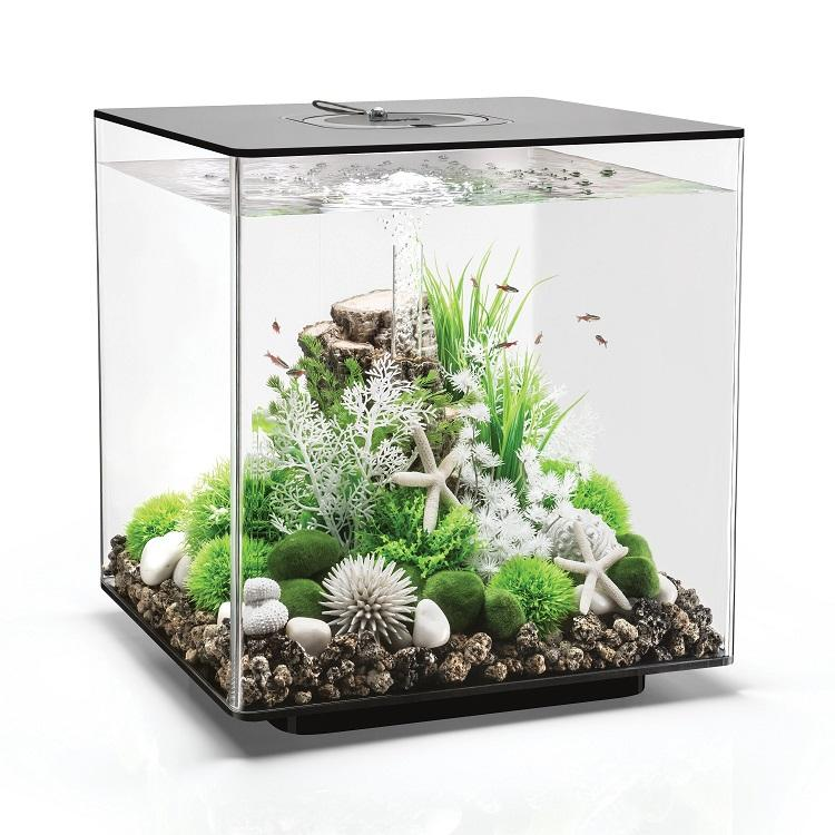 Black biOrb® CUBE 60 Aquarium Kit by Oase