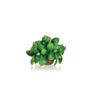 biOrb® Mistletoe Ball Aquarium Decoration