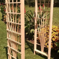 Amish-Made Pine Concord Arbors with fan lattice and straight cross-bar, unfinished