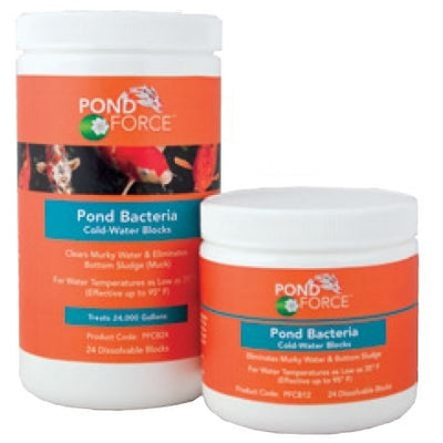 Pond Force™ Pond Bacteria Cold Water Blocks