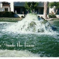 A fountain before using Diversified Waterscapes F-10 Foam Kill
