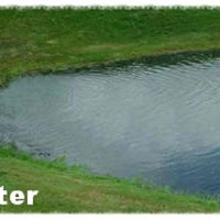 Pond after using Diversified Waterscapes F-50 Bio Pure beneficial bacteria