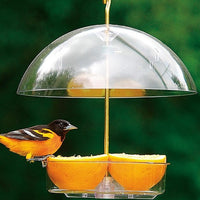 Droll Yankees® X-1 Seed Saver Bird Feeder with orange slices