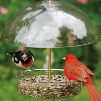 Droll Yankees® X-1 Seed Saver Bird Feeder with sunflower seed