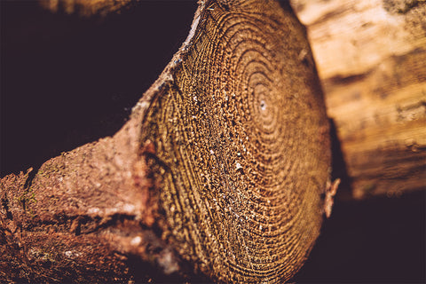 Logs for Sale Perthshire